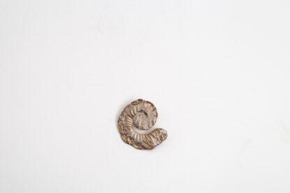 Unikat-Silber-Schmuckkunst in Spiraloptik von Petra Wenski-Hänisch, Anhänger, Spiraloptik, Silber
